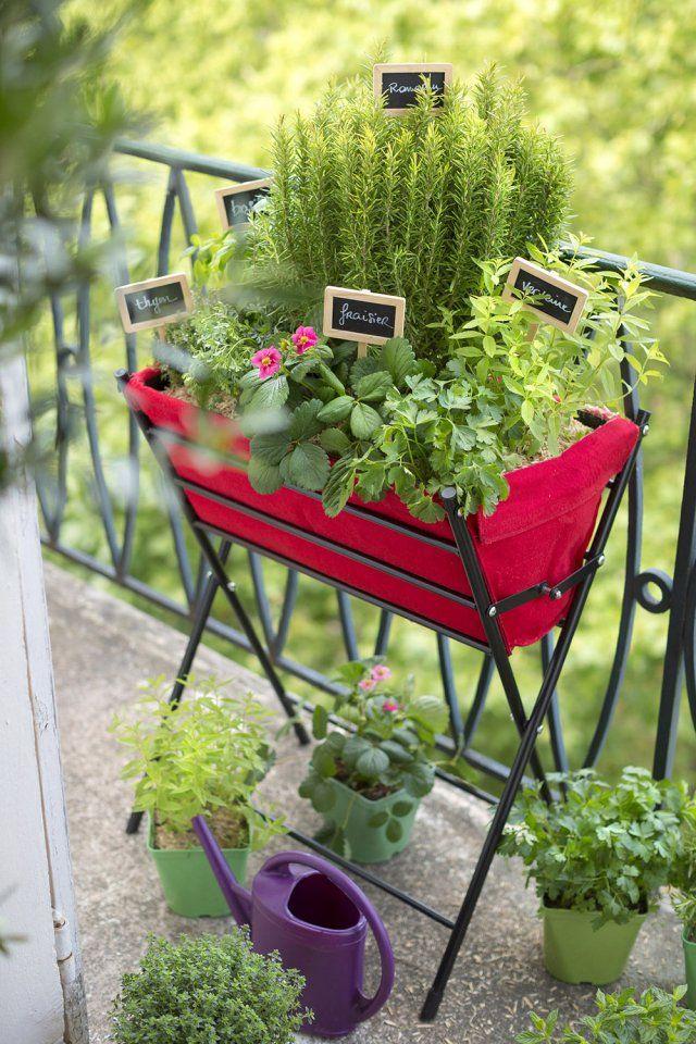 cr er un potager sur mon balcon herbs potager jardins jardinage. Black Bedroom Furniture Sets. Home Design Ideas