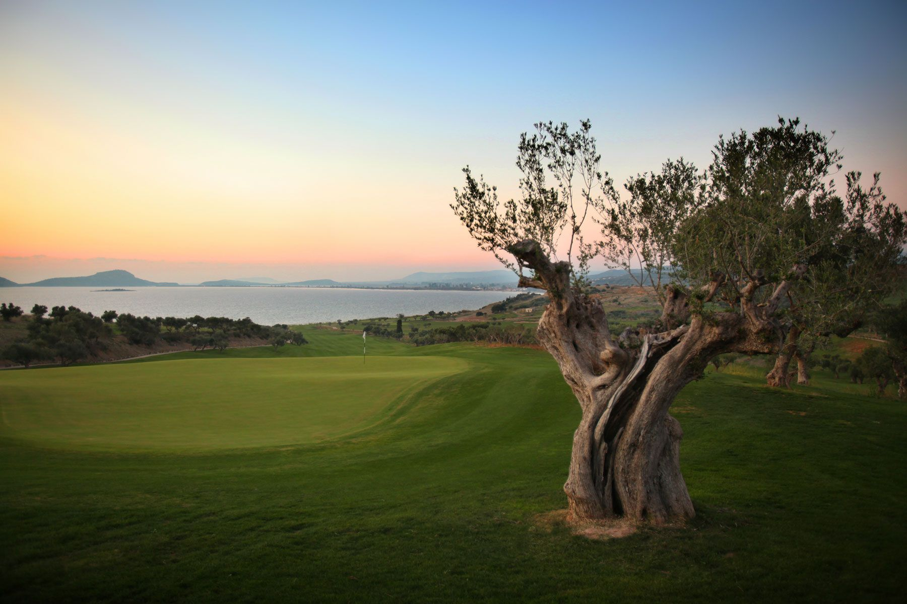 19+ Athens country club golf course information