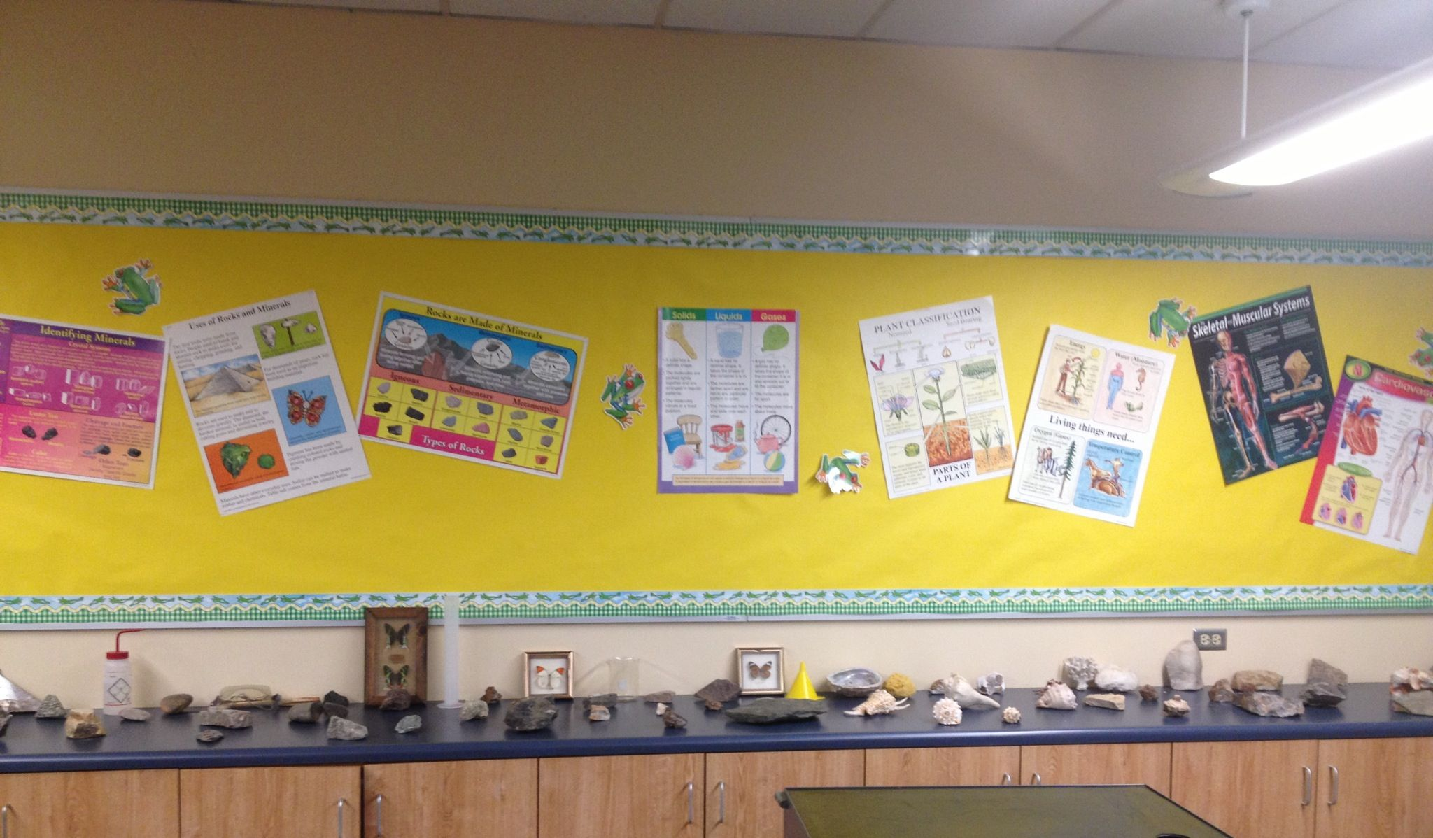 Science Display For 7th Grade Class Posters With Various
