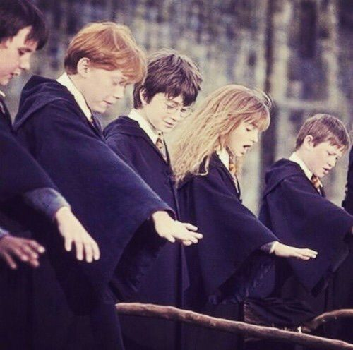 Harry Potter Hermione Granger And Ron Weasley Bild Harry Potter Pictures Harry Potter Images Harry Potter Universal