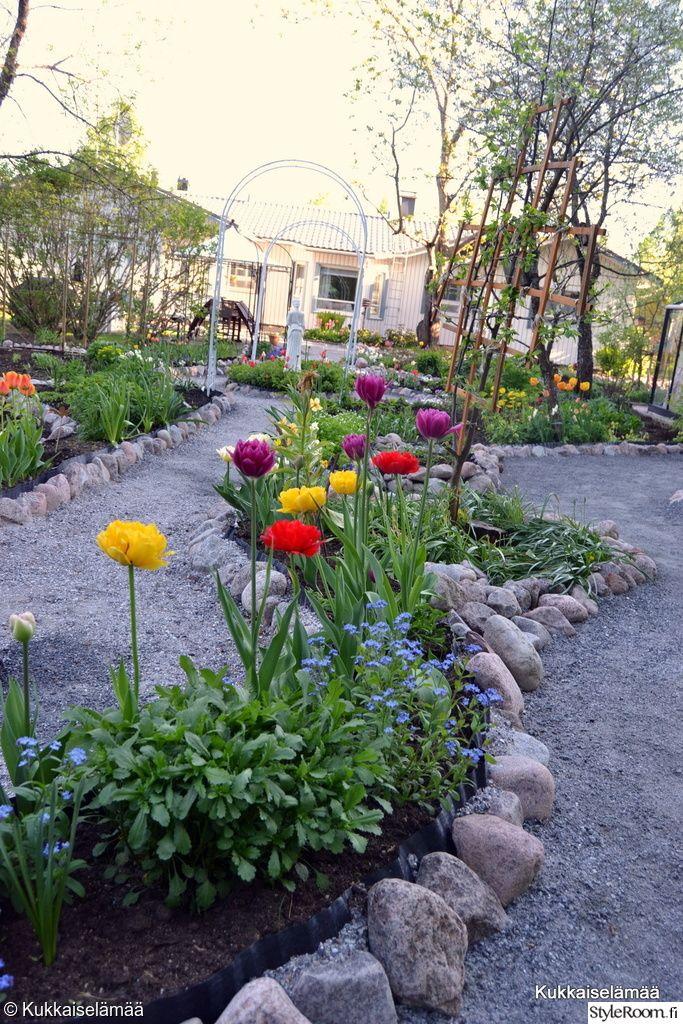 piha,puutarha,istutukset