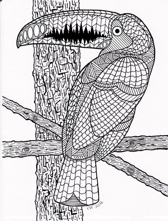 Coloring Page Zentangle Toucan Exotic Bird Digital