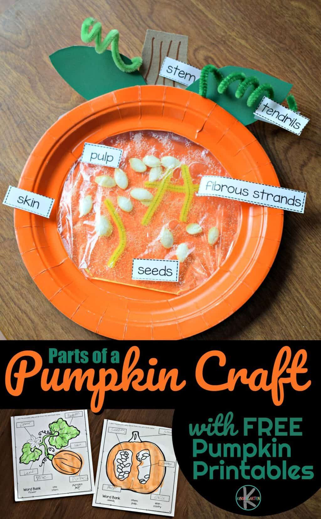 Parts Of A Pumpkin Craft And Free Worksheet For Preschool