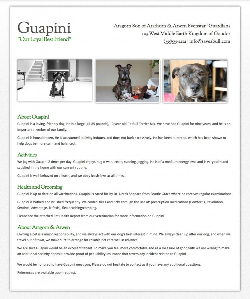 creating a dog resume other tips for renters with dogs from