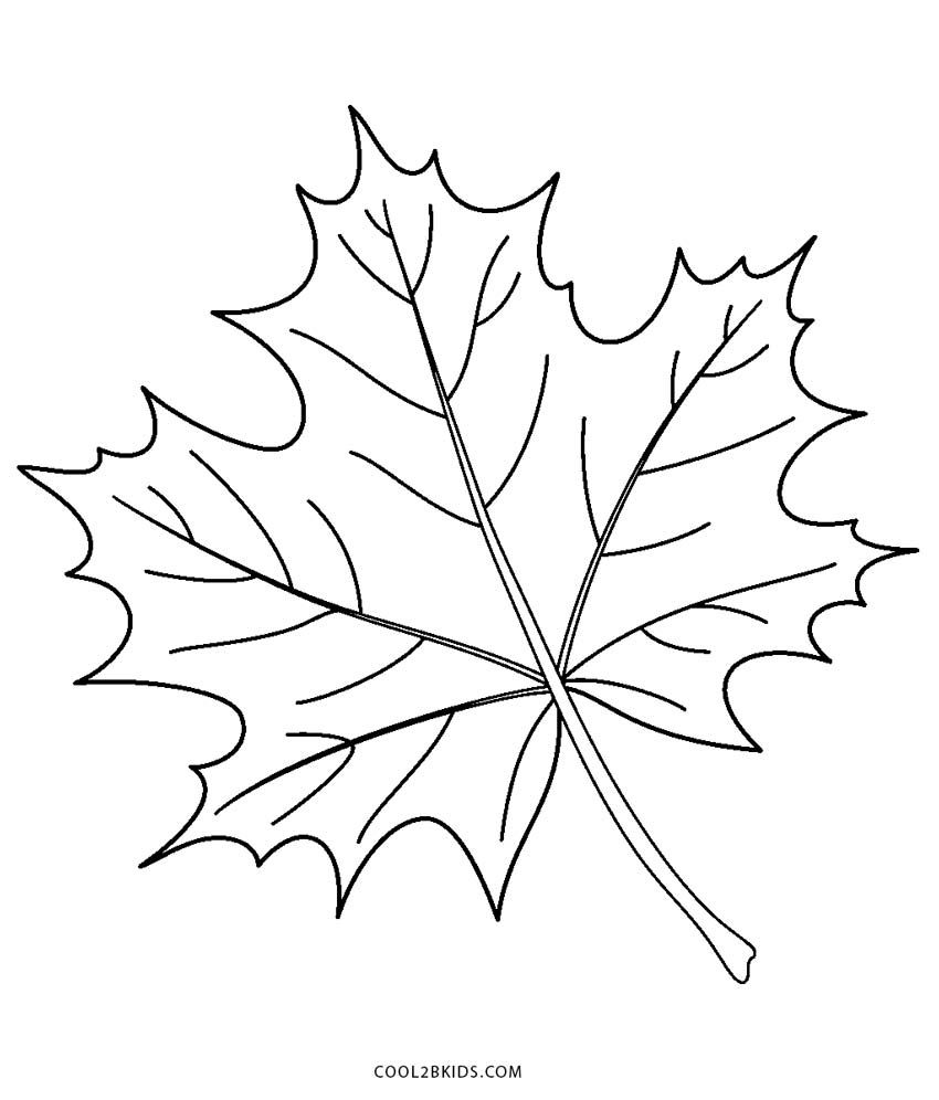 Free Leaf Coloring Pages To Print Pics