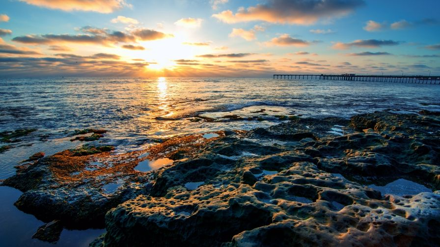 Ocean Beach Shoreline San Diego Wallpaper Download High