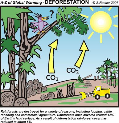 global warming from deforestation - Google Search | FTS 007 ...