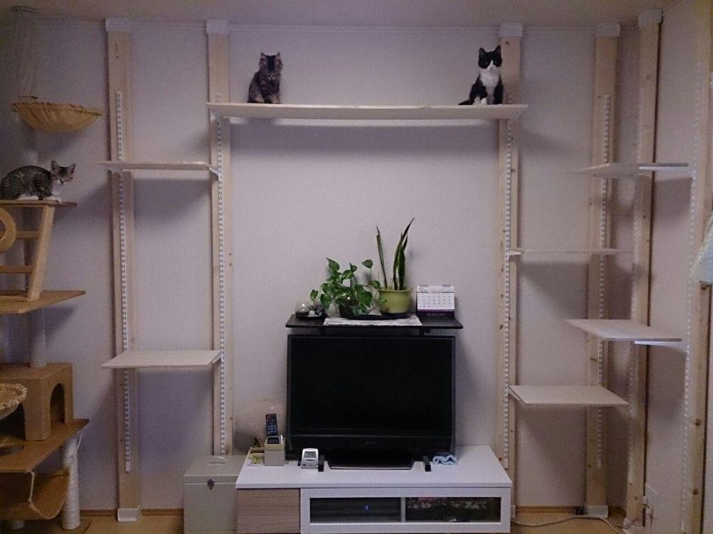 賃貸の壁を傷つけずdiyするディアウォール 棚やギター掛けにオススメ ふかよい 料理やゲームのブログ 猫の家具 きゃっとウォーク インテリア 収納