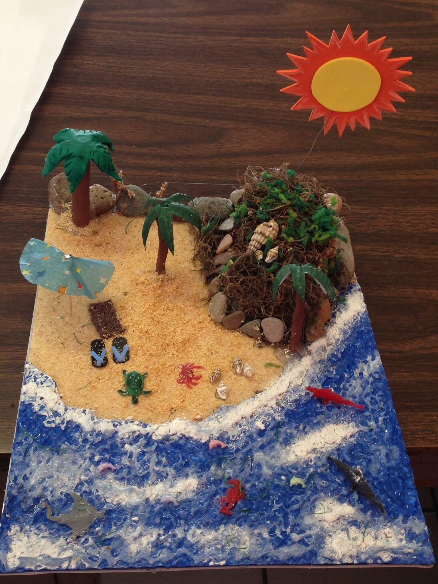 Maqueta de playa … | Maqueta de playa, Maquetas de ecosistemas ...