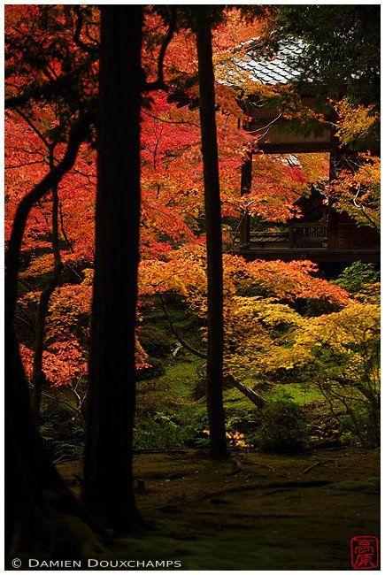 Saiho-ji is a Rinzai Zen Buddhist temple located in Matsuo, Nishikyo Ward…