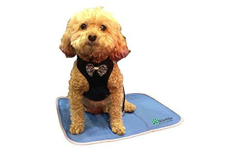 The Green Pet Shop Self Cooling Pet Pad Small The Green Https