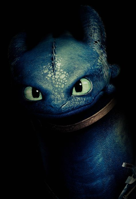 Edit How To Train Your Dragon Httyd Toothless Httyd2 Itistimetodisappears Tag Yor 2