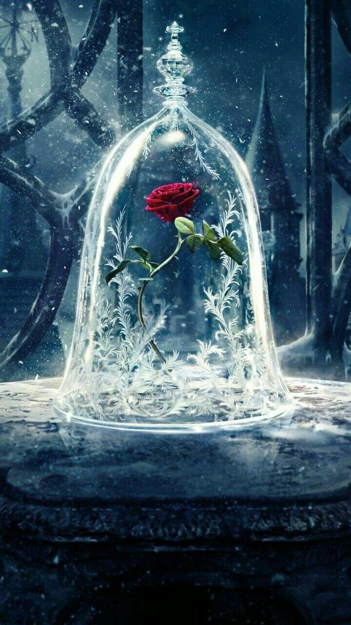 La Rose Dans La Belle Et La B 234 Te Papier Peint Disney La B 234 Te Art Disney