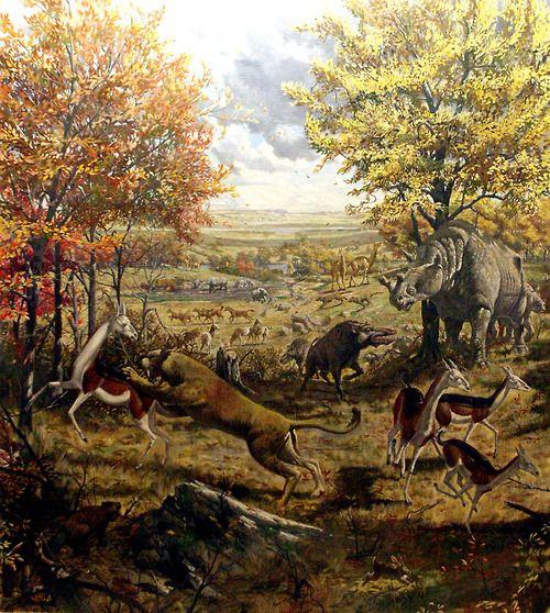 Prehistoric Mammals Prehistoric Creatures Prehistoric Animals