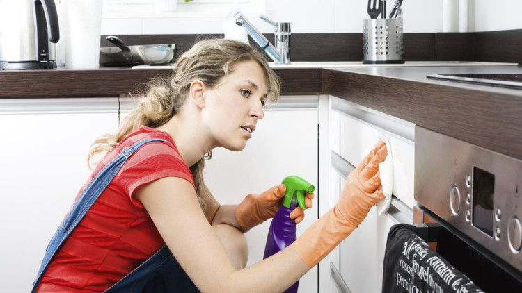 Image result for professional and experienced Home Cleaners