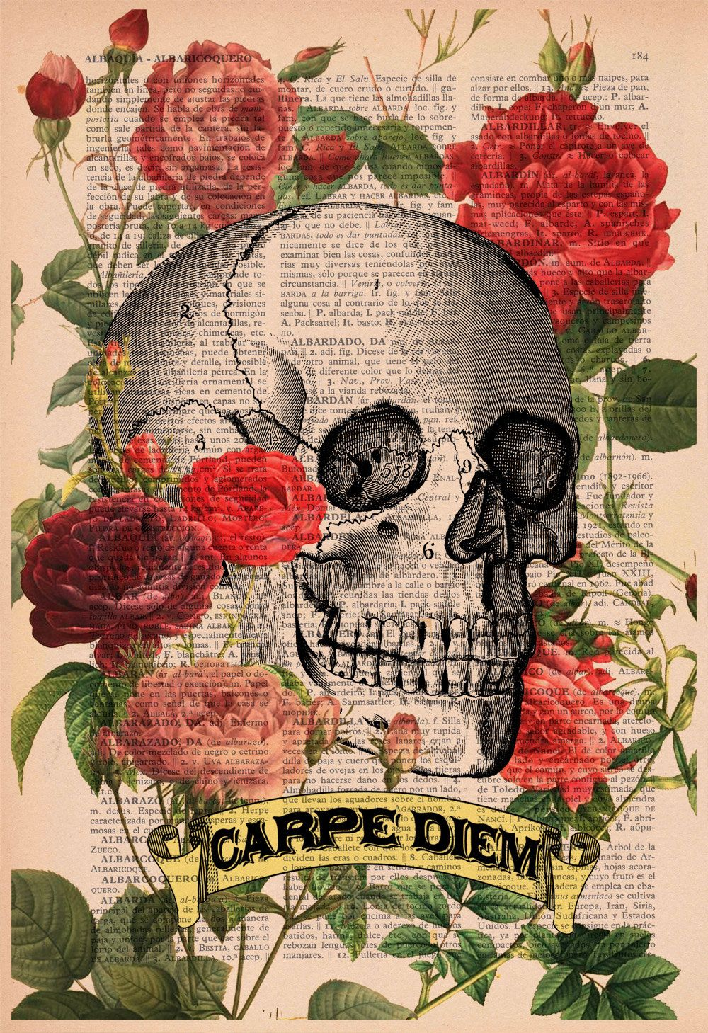 spring carpe diem roses skull tatoo skull art print wall upcycled book print roses skull tattoo carpe diem print on vintage dictionary book art print