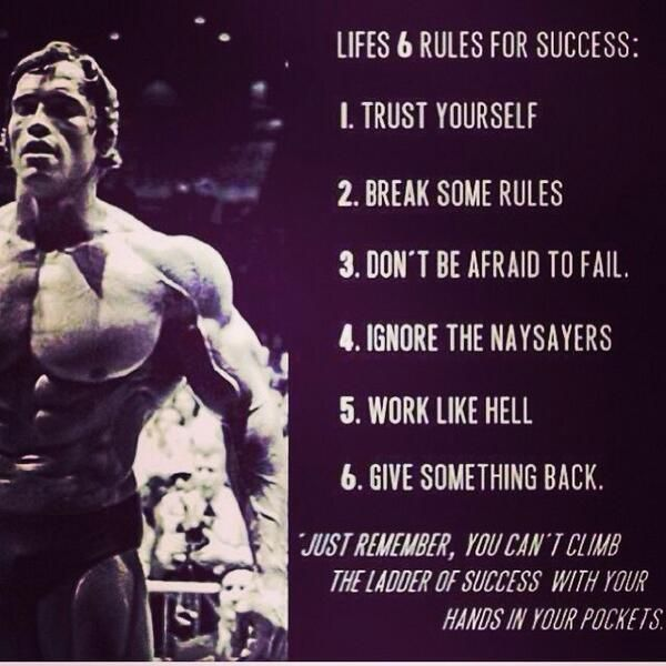 Arnolds 6 Rules Of Success Arnold Schwarzenegger Quotes Fitness