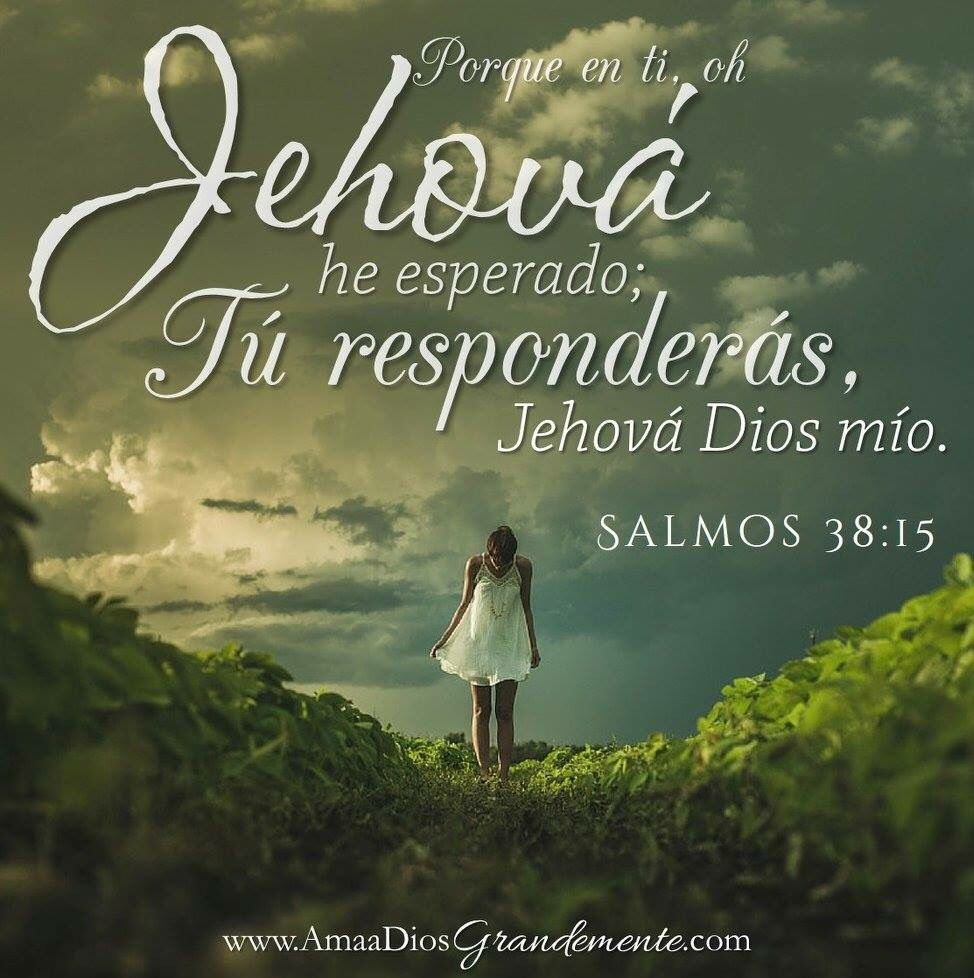 Jehova En Ti He Esperado Tu Responderás Creciendoenoracion Esperarendios Promesasyfuturo Jesussalva Adg Amaadios Versículos Bíblicos Jehova Dios Salmos