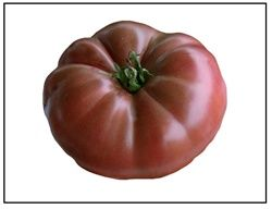 Cherokee Purple Tomato Plants For Sale Online Cherokee 400 x 300