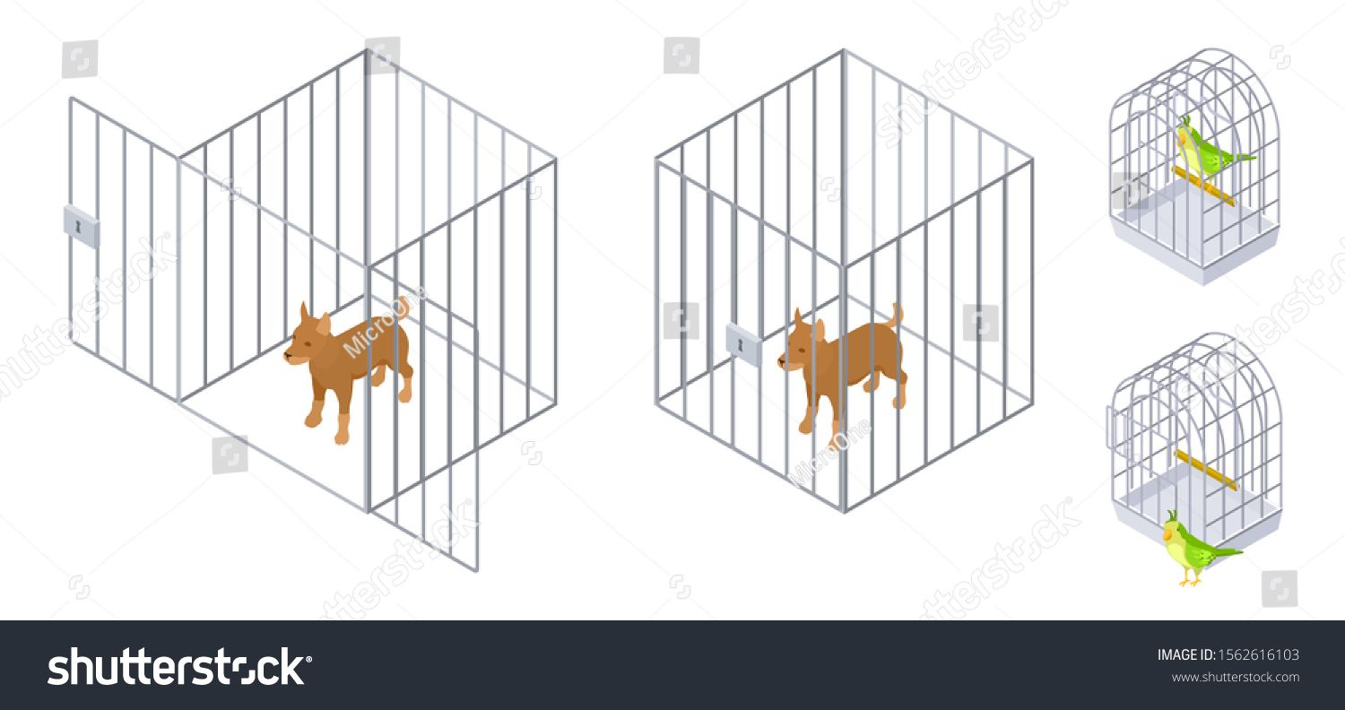 Animals In Cages Isometric Dog Bird Inside And Outside Cage Pet Care Vector Illustration Ad Sponsored Dog Bird Isometric Animals Pet Cage Pet Care Pets