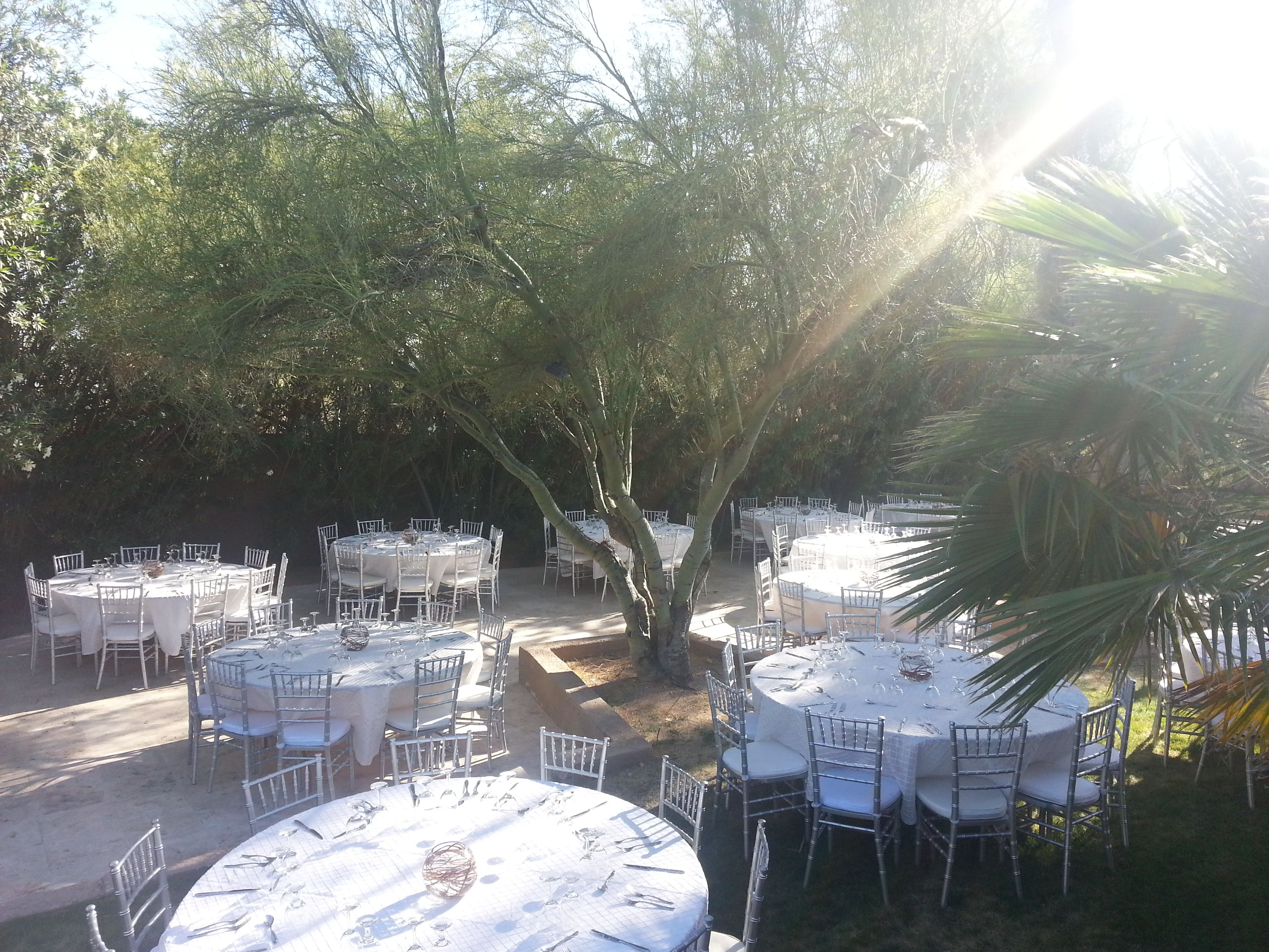 Astounding A Lovely Wedding Event By Alc Rentals Via Elena In Download Free Architecture Designs Momecebritishbridgeorg