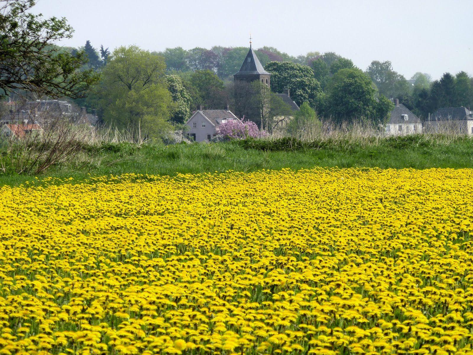 Oosterbeek, Gelderland
