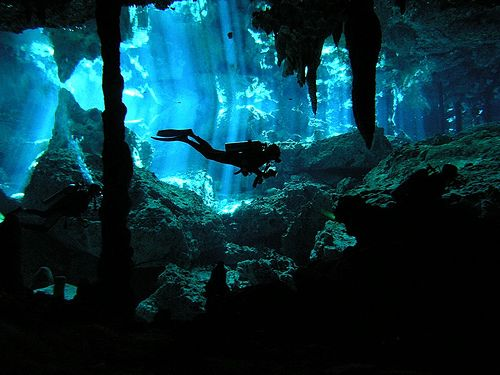 cenote diving - Google 検索