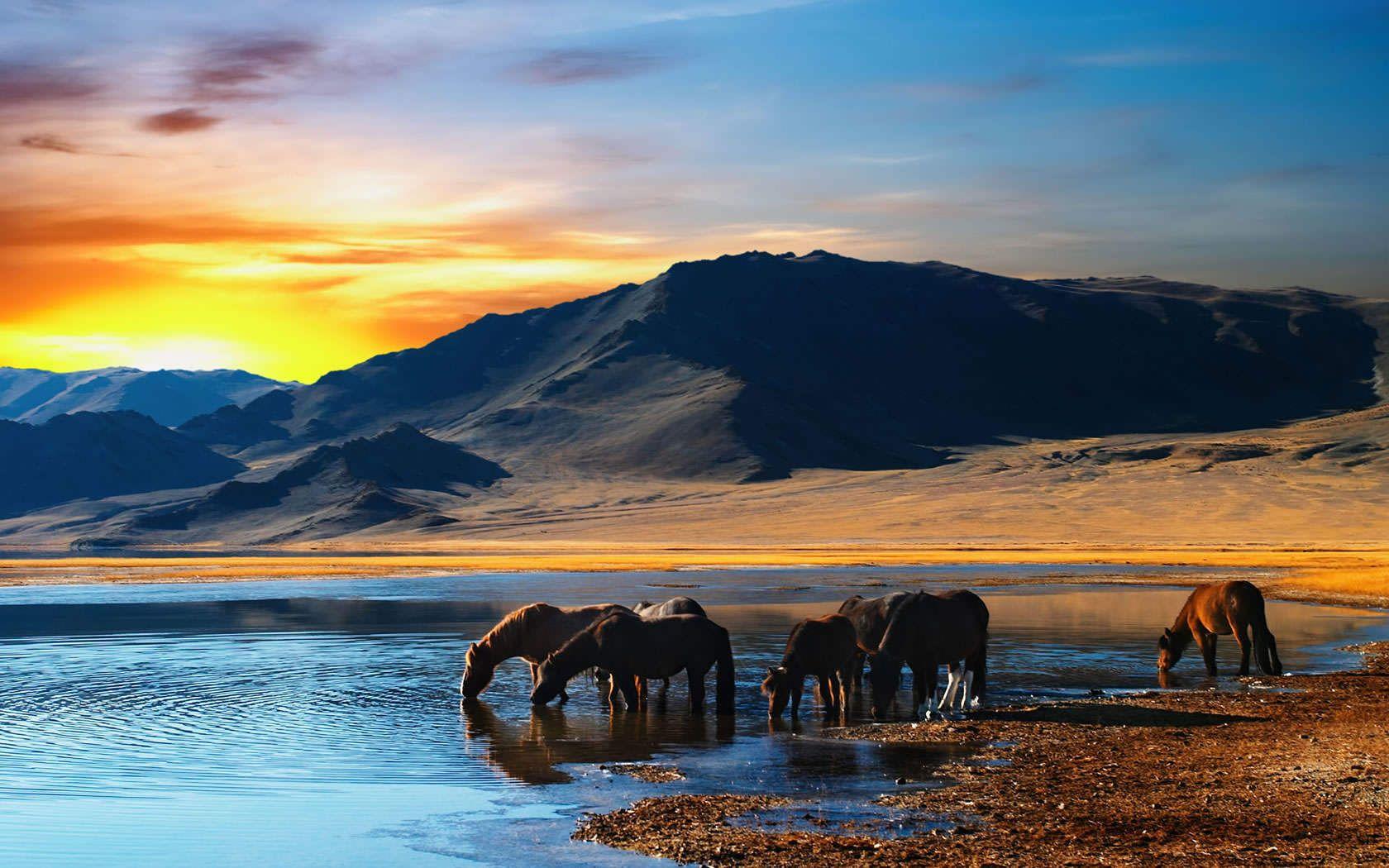 Breathtaking Nature Scenes
