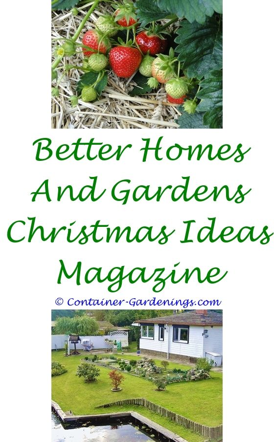 Tips For Starting A Vegetable Garden | Garden ideas, Sensory garden ...