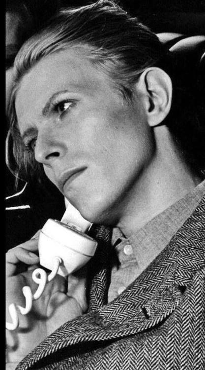 David Bowie (please follow minkshmink on pinterest)