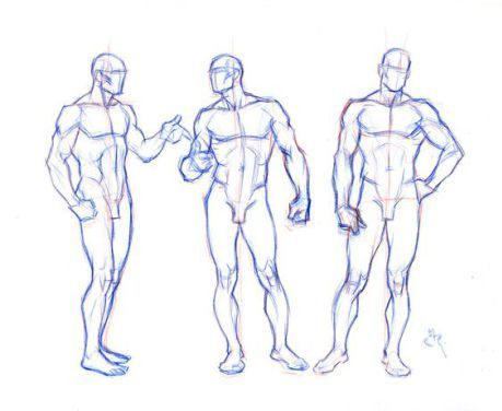 Character Design Collection Male Anatomy Drawing In 2018