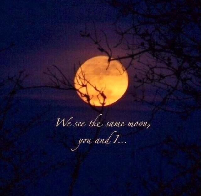 Epiphany On Twitter Full Moon Quotes Moon Quotes Moon
