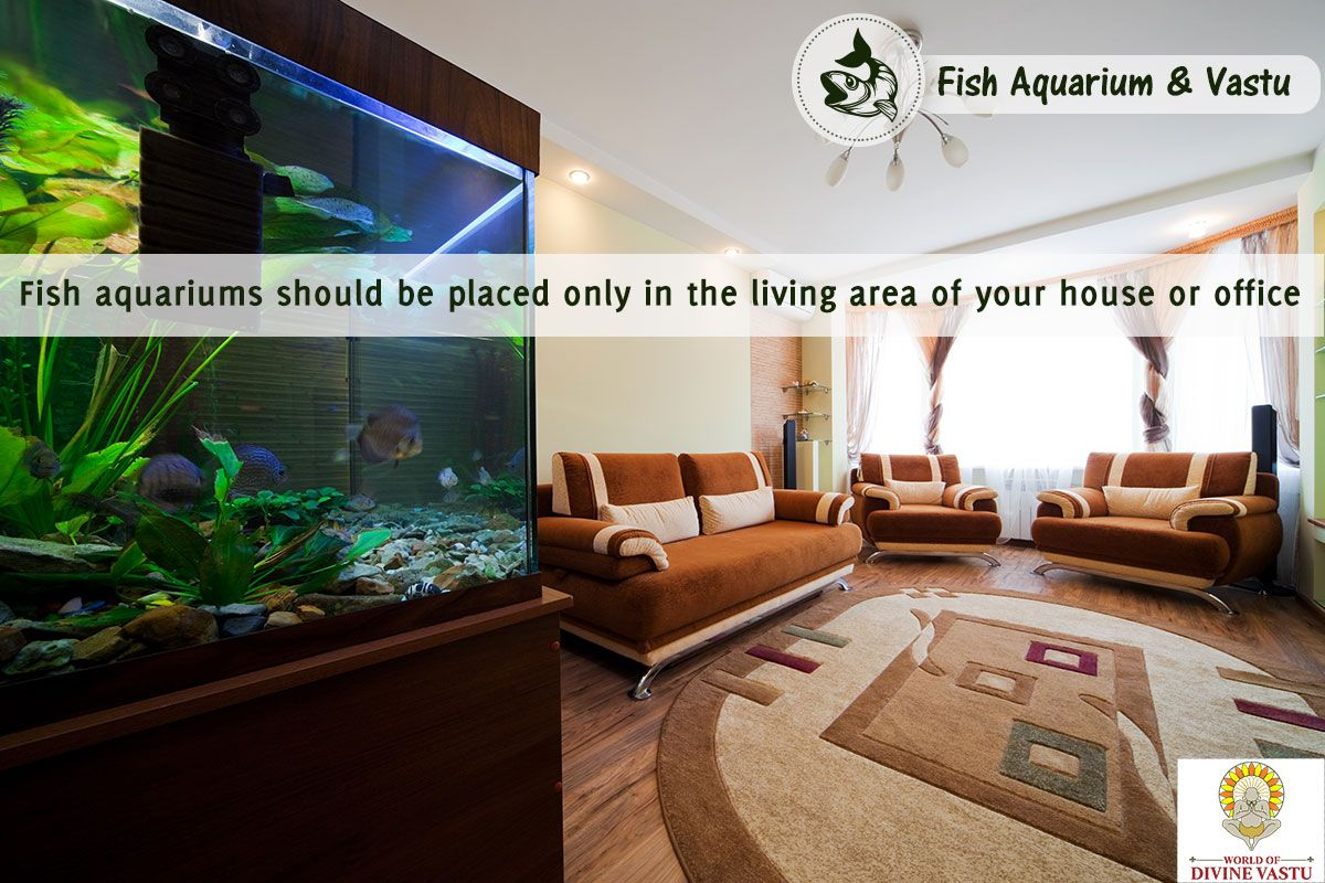 Fish aquarium in chandigarh - Placing An Aquarium In Other Rooms May Attract Negativity And Disturb The Peace Of Mind