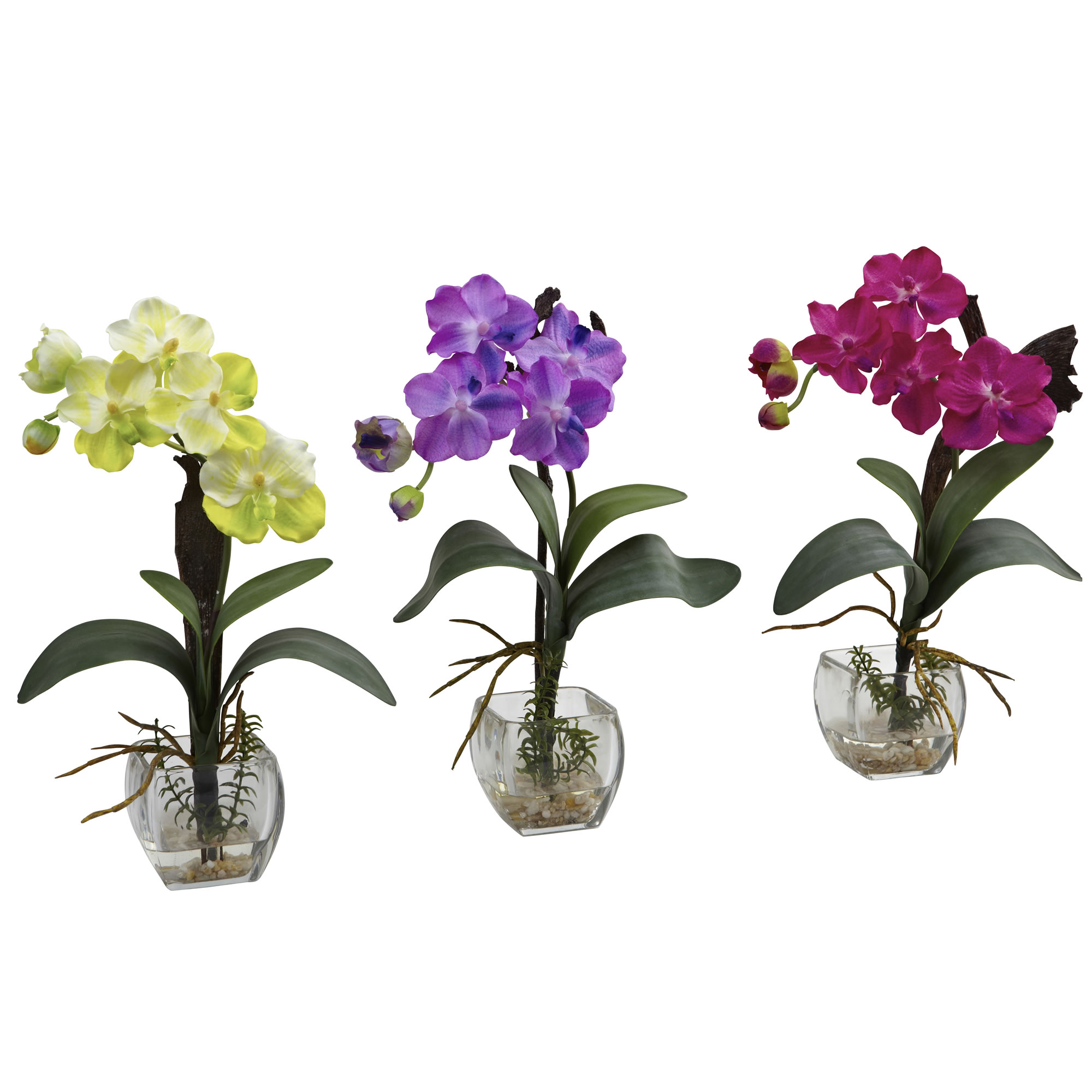 David shaw silverware na ltd mini vanda orchid arrangement set of