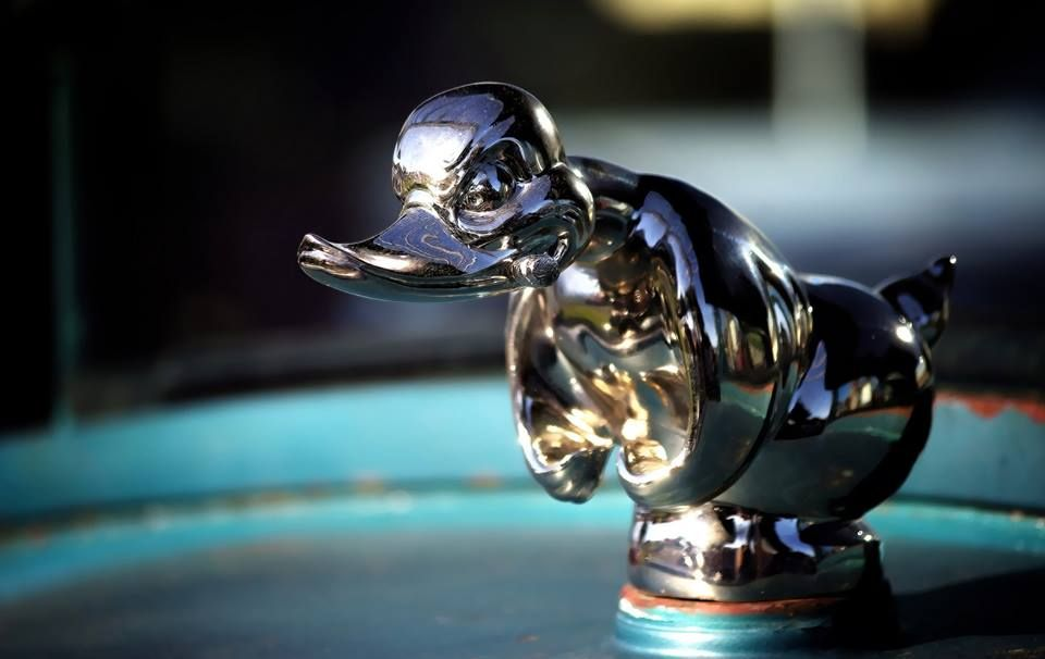 death proof duck hood ornament  convoy angry rubber duck   deathproofduck com