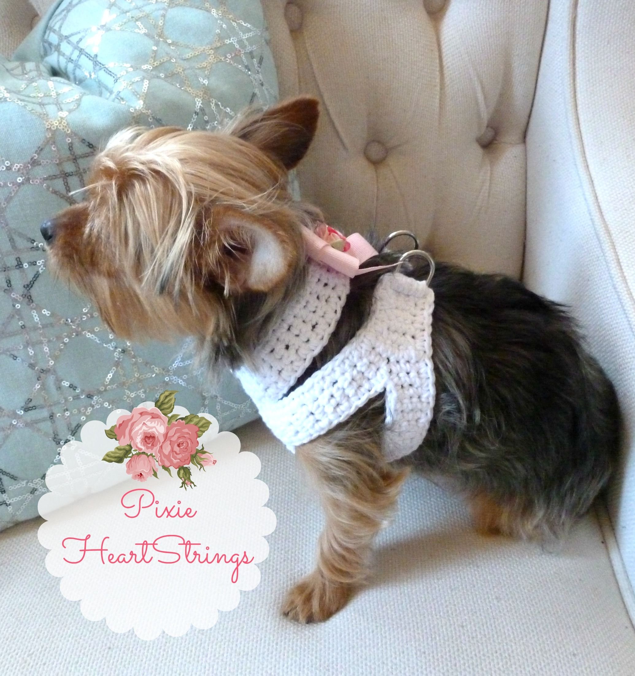 A Crocheted Dog Harness for Your Tiny Dog ~ FREE Pattern | Tiere ...