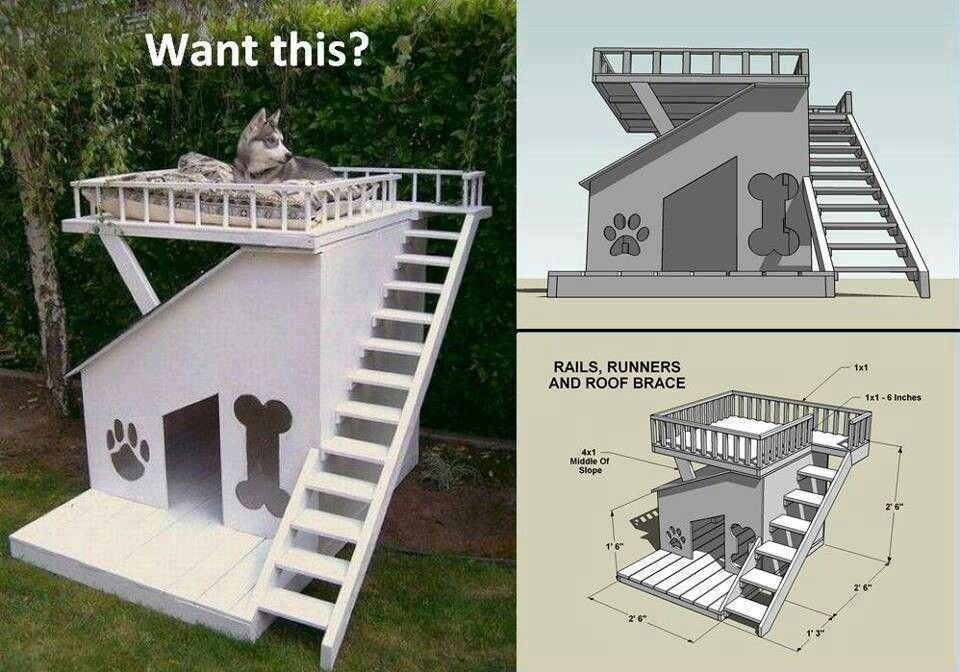 one day for a husky dog house plans cool dog houses