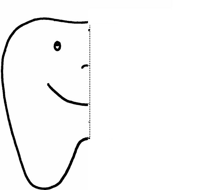 tooth Symmetry Activity Coloring Pages Crafts and
