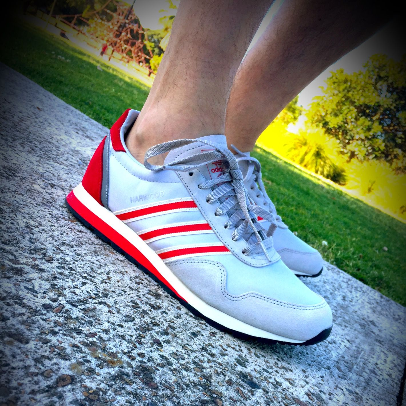 Harwood SPZL | Adidas spezial