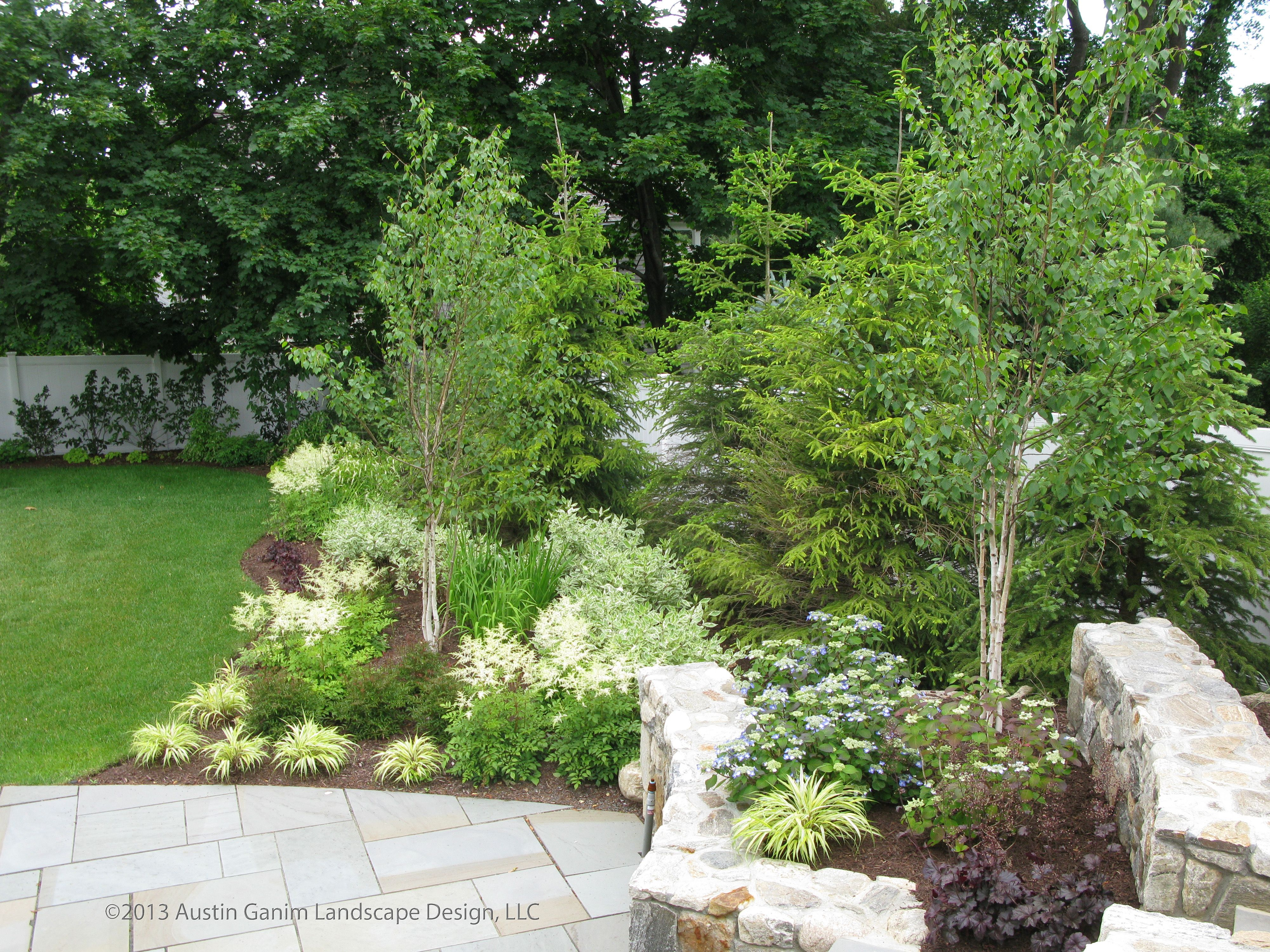 Pin By Austin Ganim Landscape Design On Beach Area Garden With A Touch Of Woodland Elements Garden Shrubs Cottage Front Garden Landscape Design