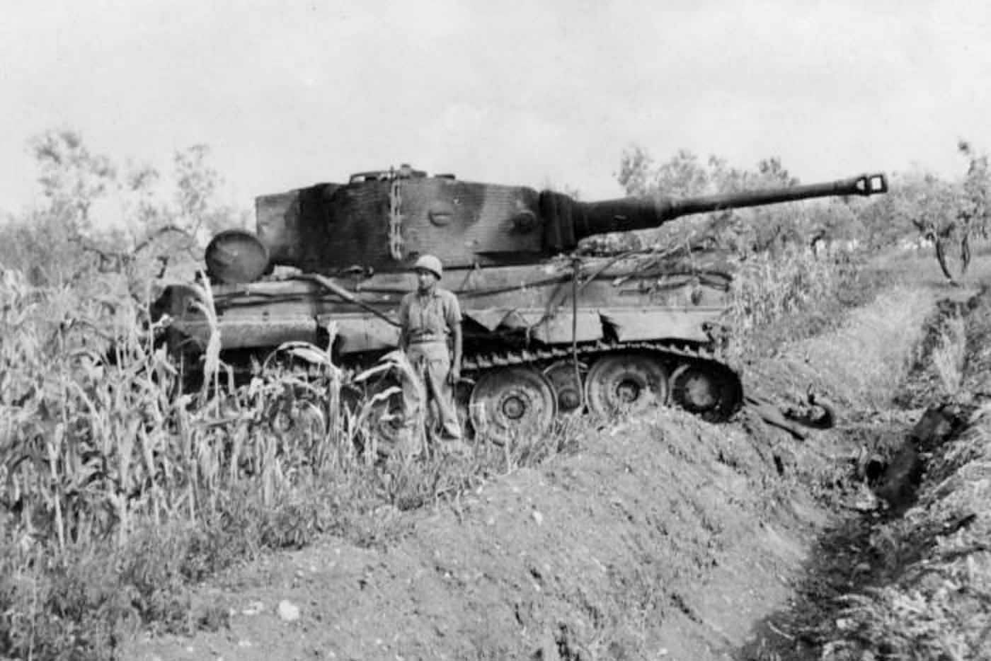 tiger tank with steel whells of the schwere panzer abteilung 508 villa bonnaza italy