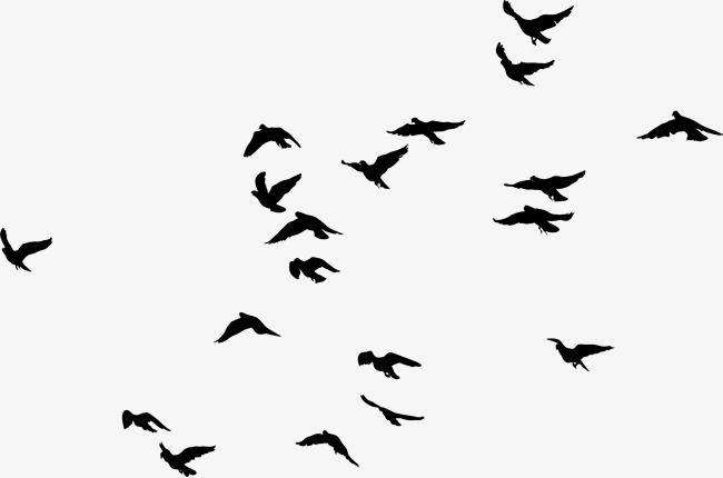 Black Birds, Black, Simple, Bird PNG Transparent Clipart