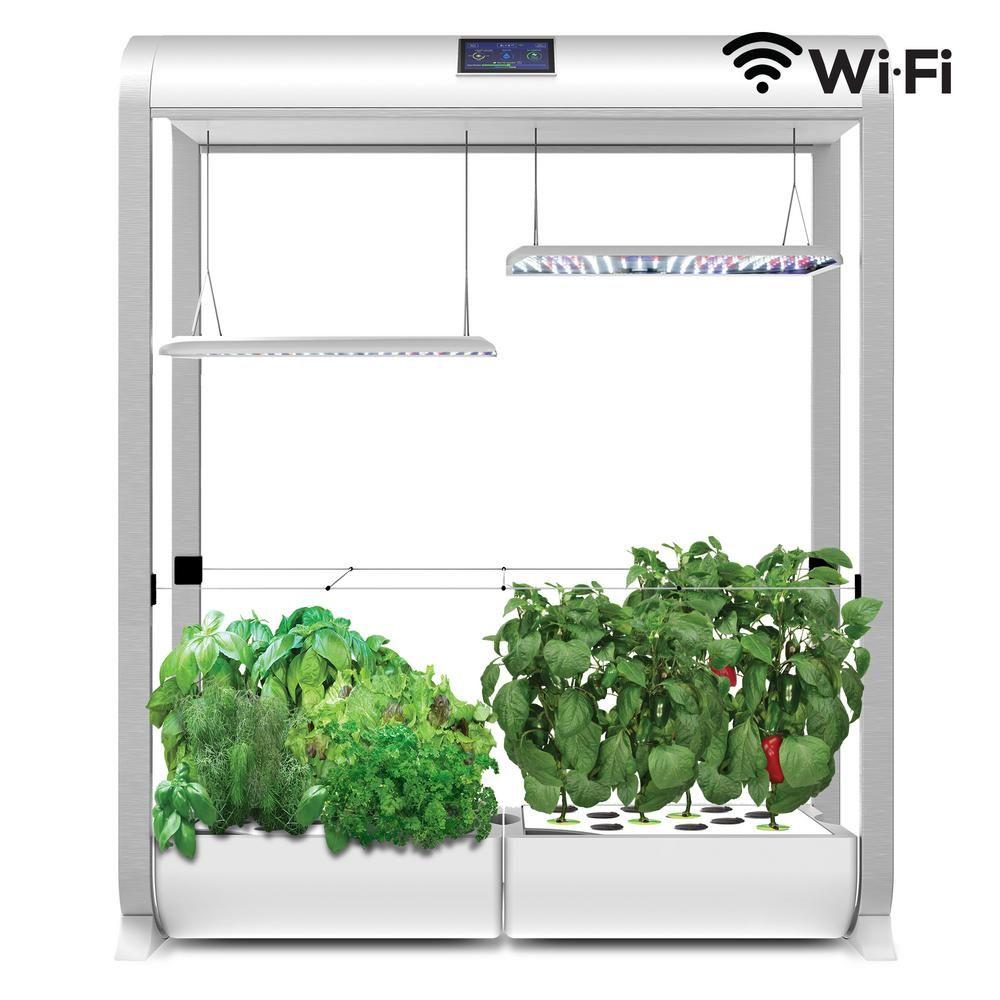 Aerogarden Farm X Large In White Plants Grown In Water 400 x 300