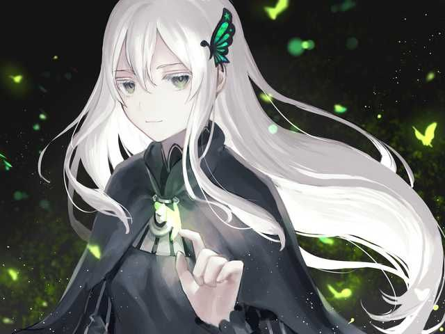 [Media] Echidna by raum