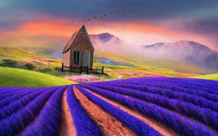 Lataa kuva laventeli, kenttä, talo, vuoret, linnut, 3D