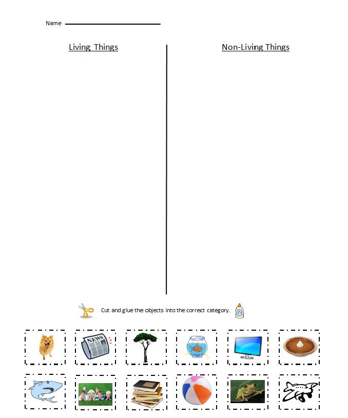 Living Things Vs. Non-Living Things worksheet. | PBL Pollination ...