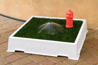 Small Porch Potty Premium Alea Porch Potty Indoor Dog