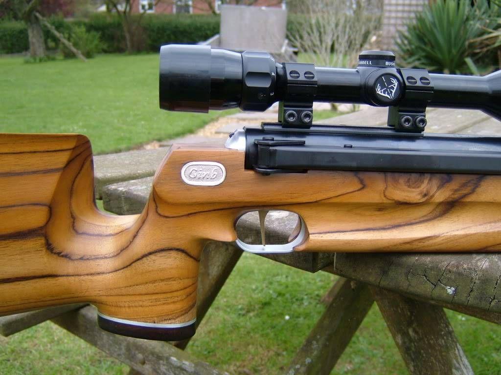 Ginb stock for Diana RWS 48 & 52   Air Rifles   Air rifle