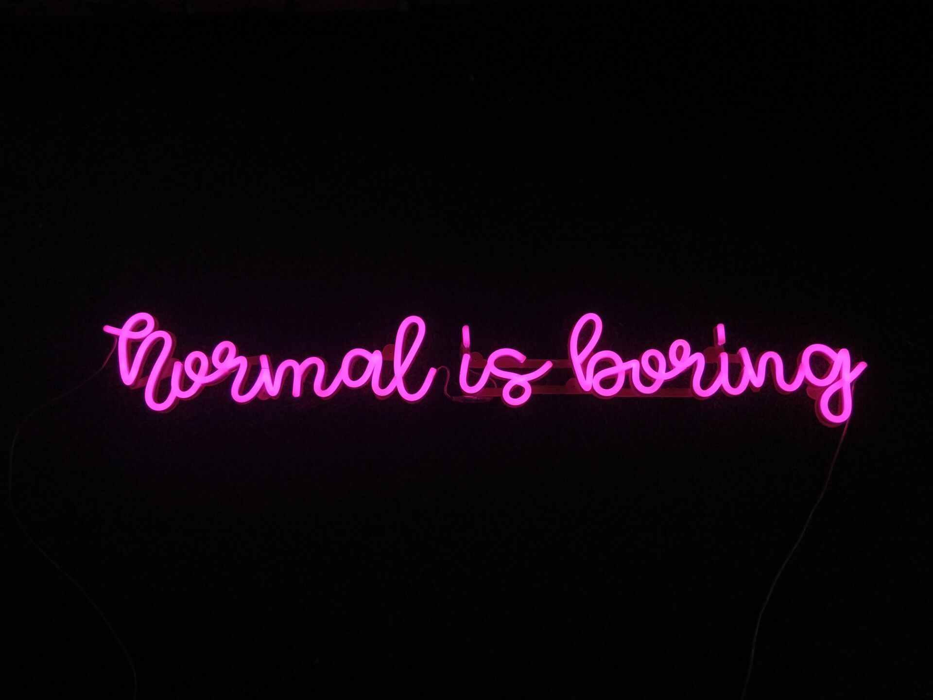 Normal is boring Customized Neon Sign Neon signs, Custom