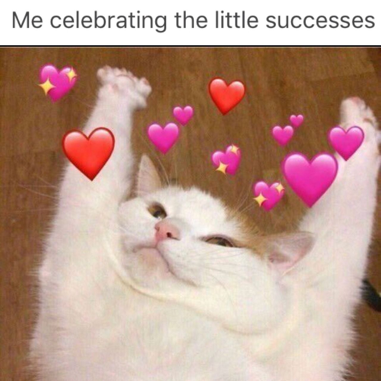 Wholesome Memes With Images Cute Love Memes Cat Memes Cute Memes
